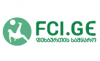 FCI.GE - Football Club Info
